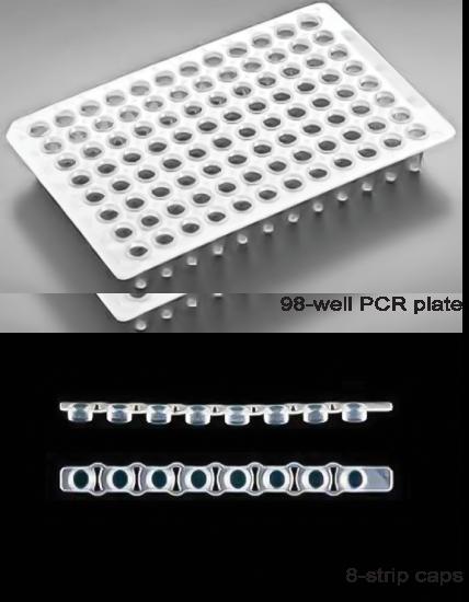 96孔PCR板(含8连管盖)